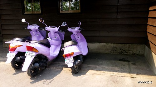 Lavender Scooters