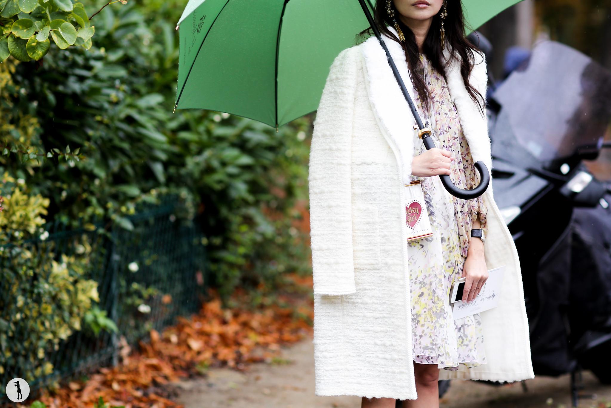 Street style at Paris Fashion Week-2 6