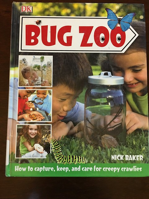 Bug Camp Summer 2016