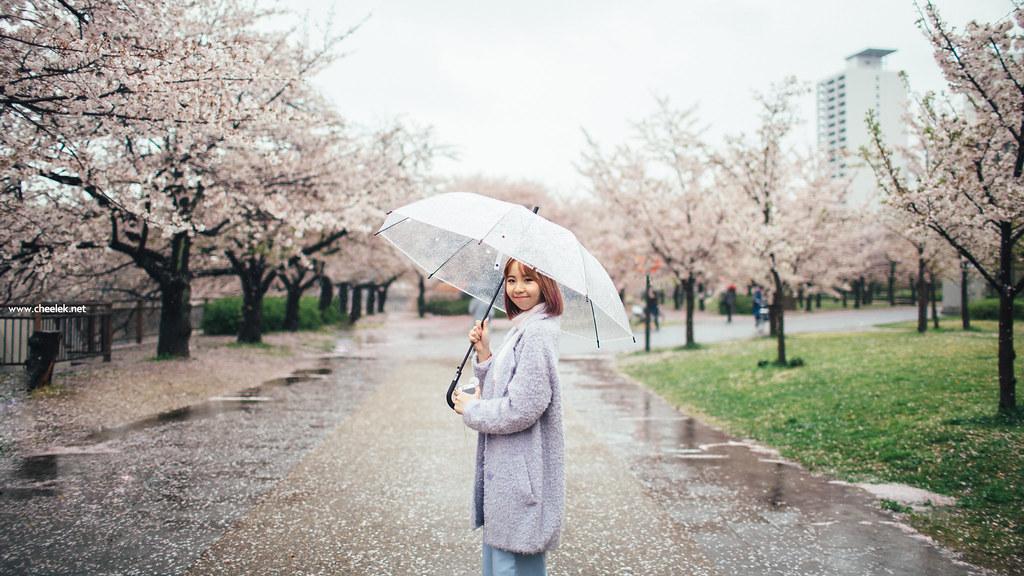 Portrait_Sakura-02