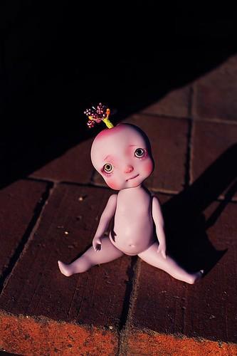 CircusKane Dolls - Princess Succulents jusqu'au 19.02 (p.7) - Page 3 28026138833_030a0ed53f