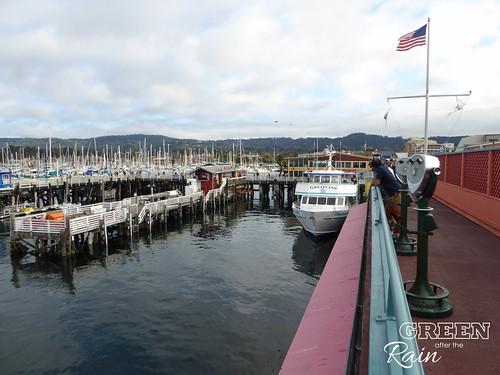 160702h Old Fishermans Warf Monterey _09