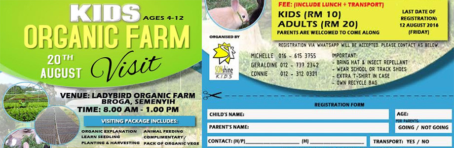 kids organic web
