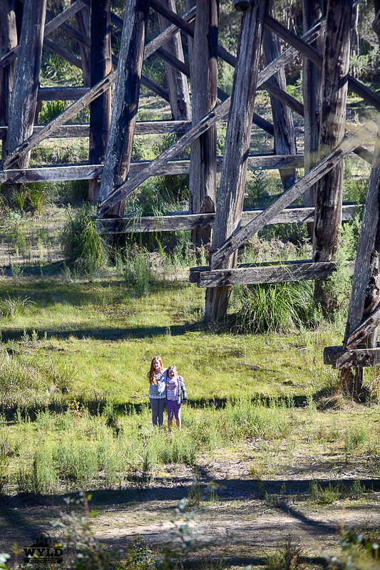 The Wyld kids standing under the Stony Creek trestle bridge