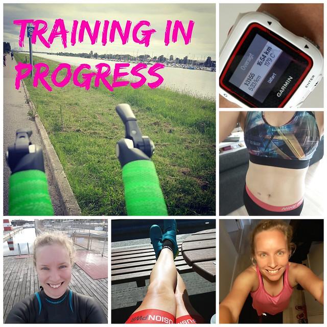 traininginprogress